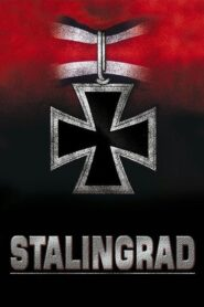 Stalingrad มหาสงครามวินาศสตาลินกราด (2013)
